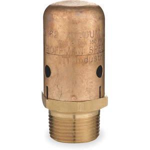 BELL & GOSSETT 62 Vacuum Breaker 3/4 Inch Mnpt Brass 150 Psi | AD8ZRA 4NU79