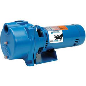 GOULDS WATER TECHNOLOGY GT073 Pump Centrifugal 3/4hp | AE9VFD 6MR22