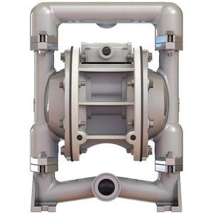 STANDARD PUMP SPFP10PPT Pump 1 Inch 36 Gpm Ptfe Diaphragm | AC8EWY 39N538